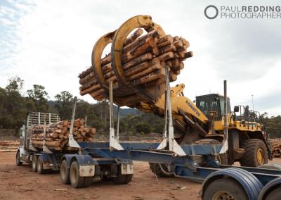 Wood chip mill photographer - Paul Redding, Tasmania
